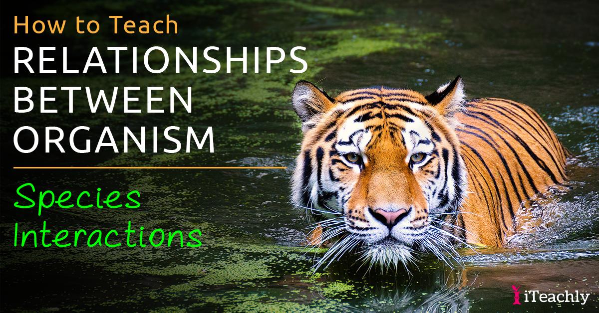Relationships Between Organisms Species Interactions Worksheet