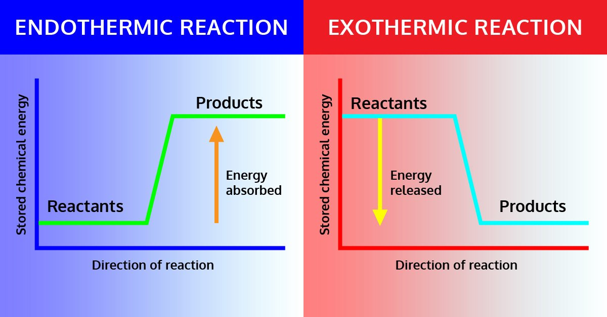 Endothermic And Exothermic Reactions Lab  U22c6 Iteachly Com