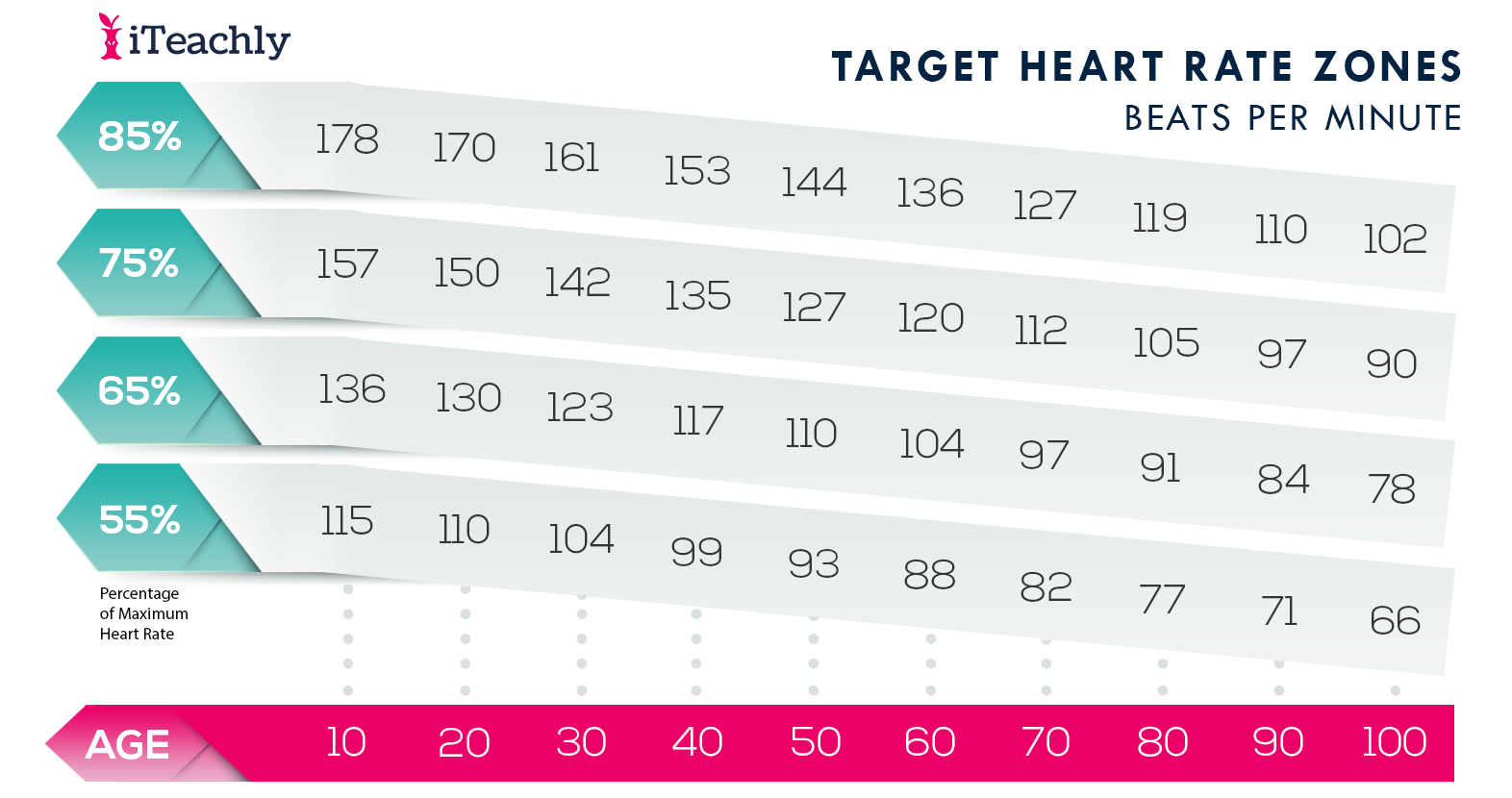 Target Heart Rate Zones Beats Per Minute, biology valentines day card, valentine's day biology, valentine's day biology jokes, valentine's day biology activity, valentine's day biology worksheet