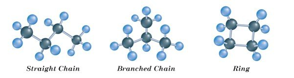 Macromolecules, Carbohydrate, Protein, Lipid, Nucleic Acid, Single Bond, Double Bond, Triple Bond, Branched Chain, Straight Chain, Ring